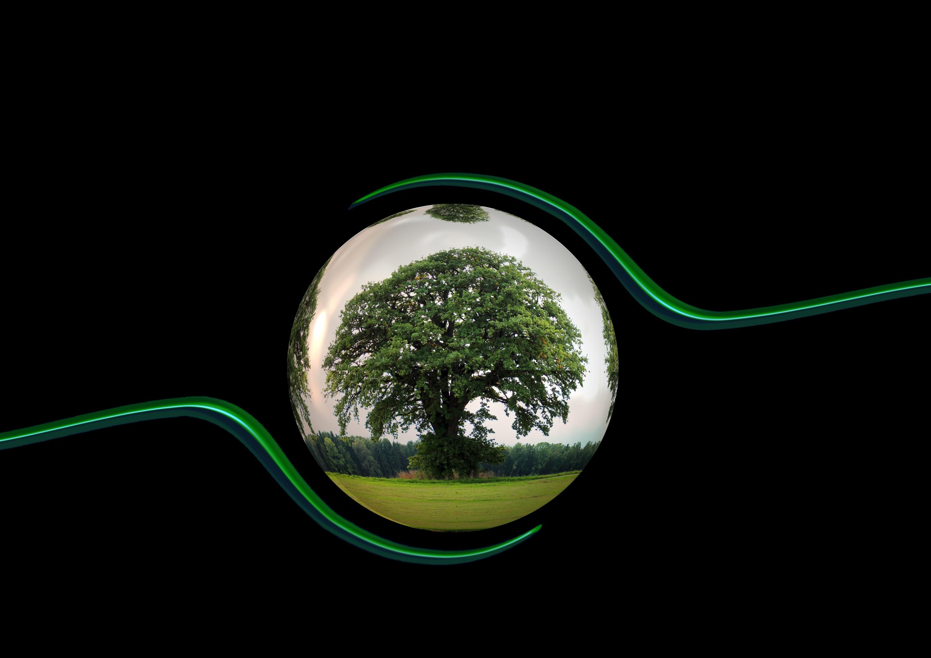 ecology-450591-2